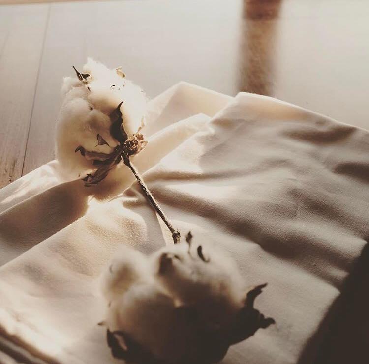 精梳棉是什麼?